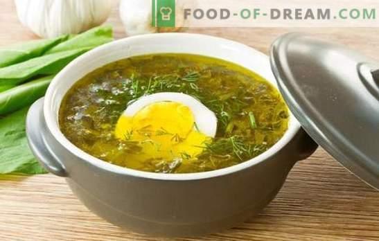 Zuringsoep met ei: stap voor stap recepten van hartig tot dieet. Samen koken van zurige soepen met ei met rijst, kaas en havermout