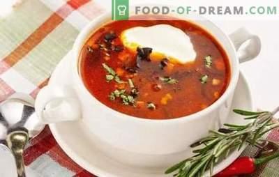 Solyanka classic-team - een restaurantgerecht in het hoofdmenu. Koken vis en vlees klassieke mengelmoes