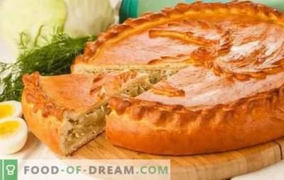 Taarten met kool in de oven - stapsgewijze recepten voor heerlijke gebakjes. Recepten van bulk- en gisttaarten met kool in de oven