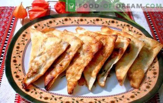 Chebureks van pita - lui, maar zo heerlijk! Vlees, kaas en gecombineerde vullingen voor lavash chebureks