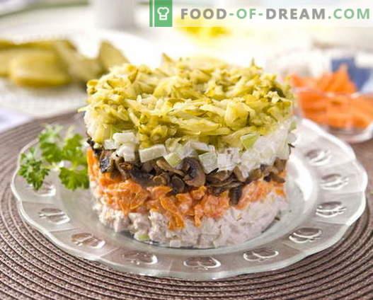 Gelaagde kippensalade met de beste recepten. Hoe goed en smakelijk koken bladerdeeg salade met kip.