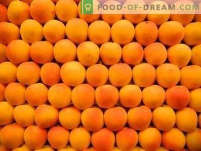 Hoe abrikozen op te slaan