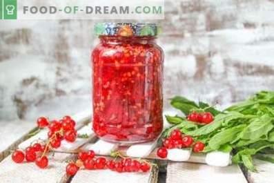 Rode aalbes, geraspt met suiker voor de winter