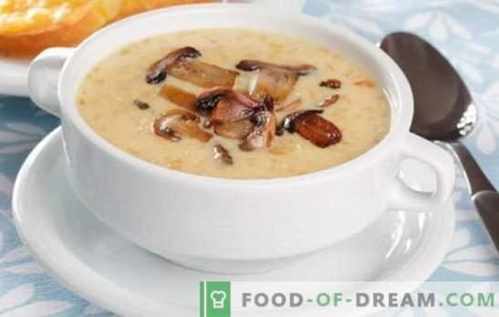 Champignoncreme soep - de waanzin van smaken en geuren! Een selectie van recepten voor een verscheidenheid aan champignonroomsoepen voor elke dag