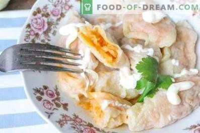 Dumplings met kool